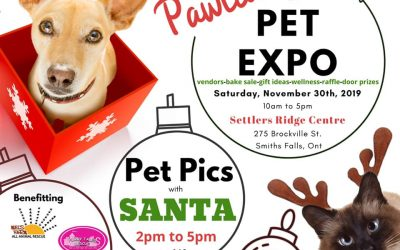 Pawliday Pet Expo